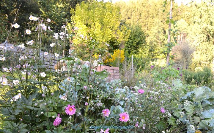 Anbauflächen nutzen - ökologischer Wohnraum